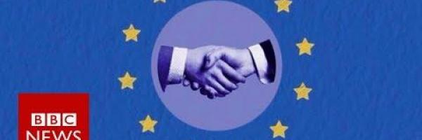 Embedded thumbnail for What would be the best trade relationship between the UK and the EU after Brexit?
